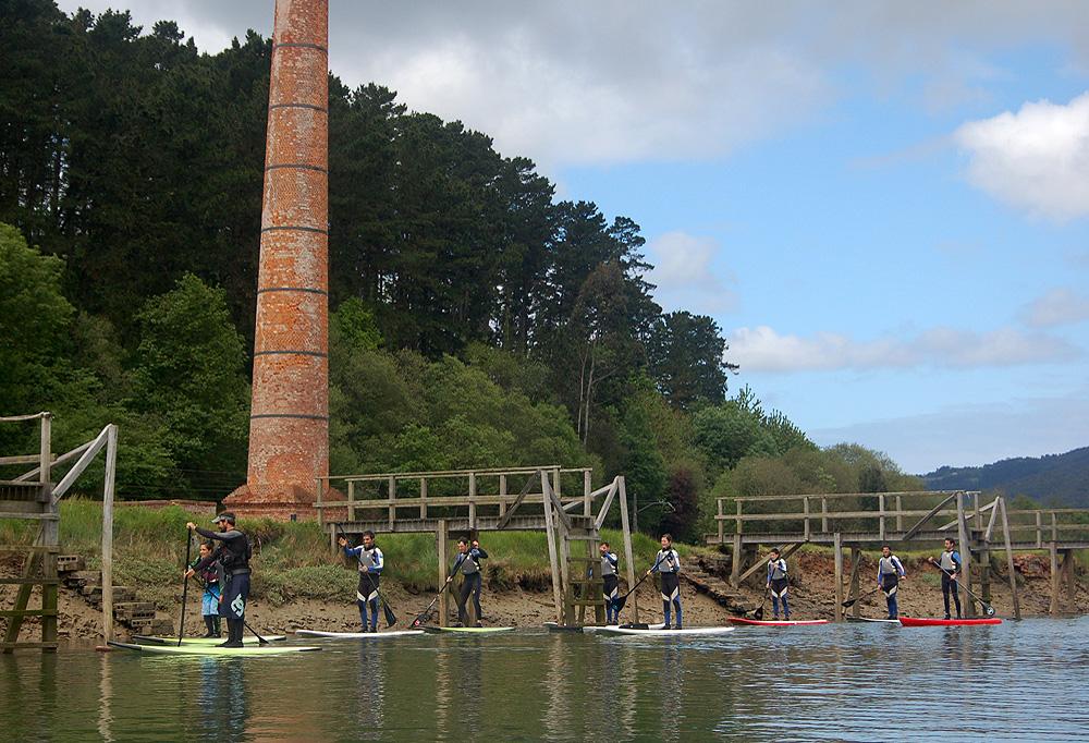 Excursión stand up paddle ría de Urdaibai